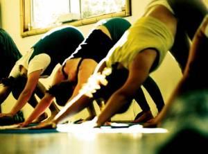1st yoga class - rajadhiraja yoga class brighton- recharge- realign and invigorate your body and mind